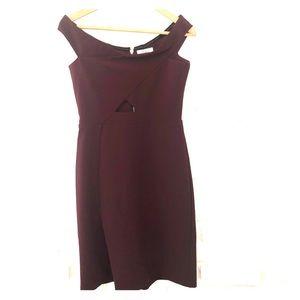 Burgundy Parker Dress! Worn once